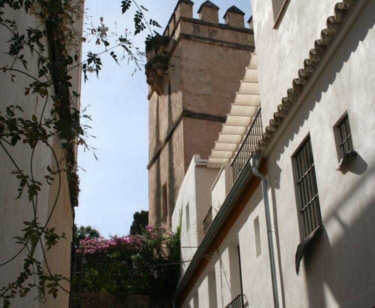 Tour du Quartier Juif Santa Cruz   + Tour guidé dans la Cathédrale & Giralda de Séville