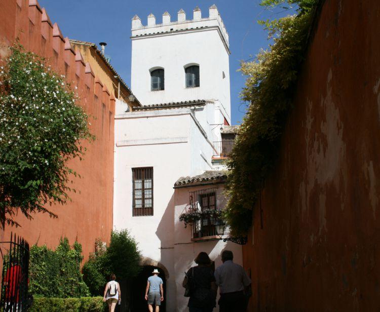 Tour du Quartier Juif Santa Cruz   + Tour de Flamenco à Séville