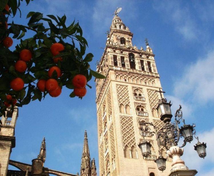 Catedral + Flamenco