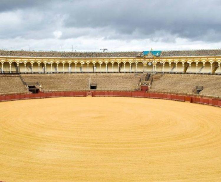 Flamenco Tour + Arènes