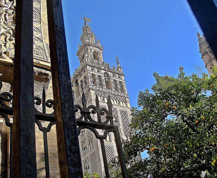 Tour inside the Royal Alcazar + Tour inside the Cathedral & Giralda + Seville Santa Cruz Jewish Quarter Tour