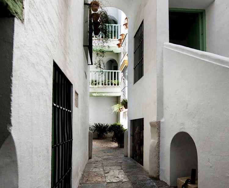 Тур по королевскому дворцу альказару Севильи + Тур Еврейский квартал Санта Круз